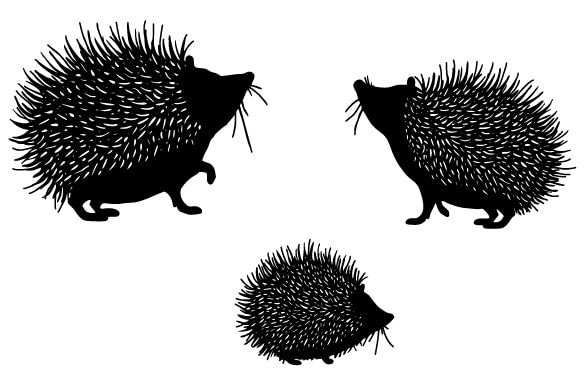 Sello Hedgehog sello claro para Scrapbooking goma de silicona transparente DIY decoración de álbum de fotos A82