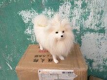 Nouveau simulation chien blanc polyéthylène & fourrures mignon blanc Shih Tzu poupée cadeau environ 31x24.5 cm 220