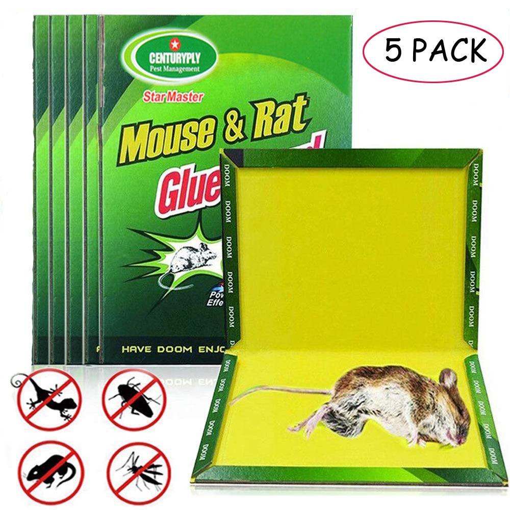 5tk kleepuvate hiirte liimilõks kõrge efektiivsusega näriliste, madude ja vigade püüdja, kahjuritõrje mittetoksiline keskkonnasõbralik
