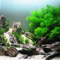 Moss Water Grass Glue Cyanoacrylate Adhesive Special Formula Aquarium Super Water Grass Landscaping Glue Accessories