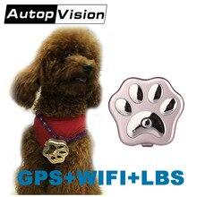 V40 mini wifi haustier GPS tracker hund katze pet persönliche 3G gps tracker Tracking über Website/APP/wechat/SMS