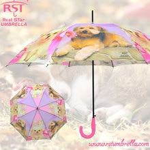 Paraguas-lluvia-Mujer mango largo Paraplu Pets guarda-chuva