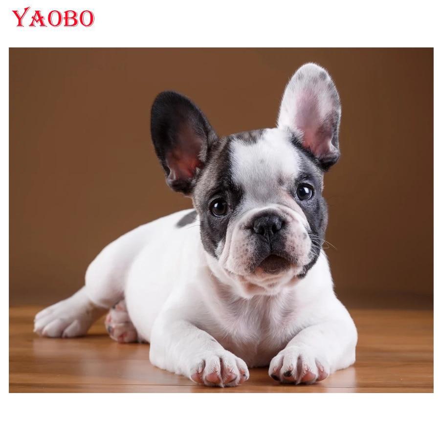 Pintura de diamantes DIY 5D, cachorros de bulldog Francés, bordado de diamantes, taladro completo, cuadro cuadrado de Animal con diamantes de imitación, decoración del hogar