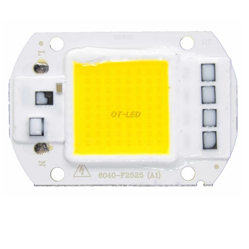 LED Lamp Chip 5W 20W 30W 50W 220V 230V 240V Input Smart IC Driver Fit For DIY Cold Warm White LED bulb Spotlight