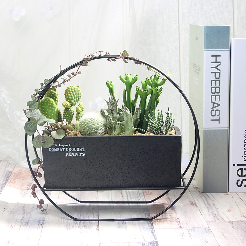 1 Набор, цементный соковыжималка, горшочек с геометрическим цветком, декоративный бонсай, кактус, поддон с железной подставкой (1 горшочек + 1 ...
