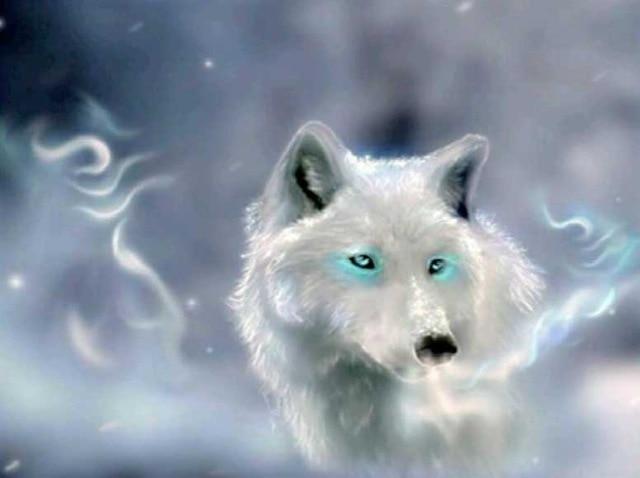 Kit de pintura de diamantes 5D, taladros de paisajismo diy parcial de animales y lobos, búho de 18 caracteres, mosaico de diamantes patrón bordado en venta
