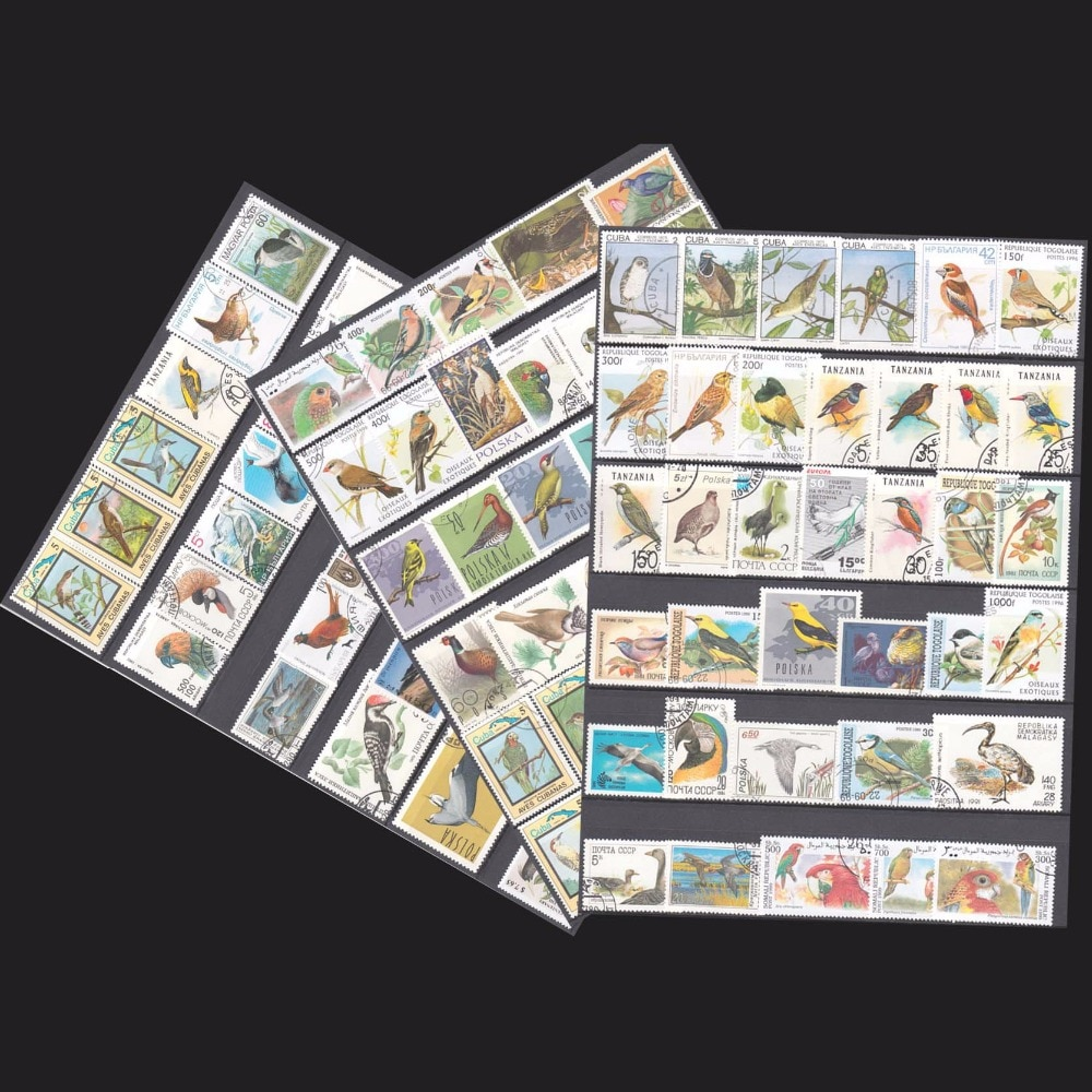 100 unids/lote todos los temas Birs diferentes en buenas condiciones para la colección de muchos países con la marca Post