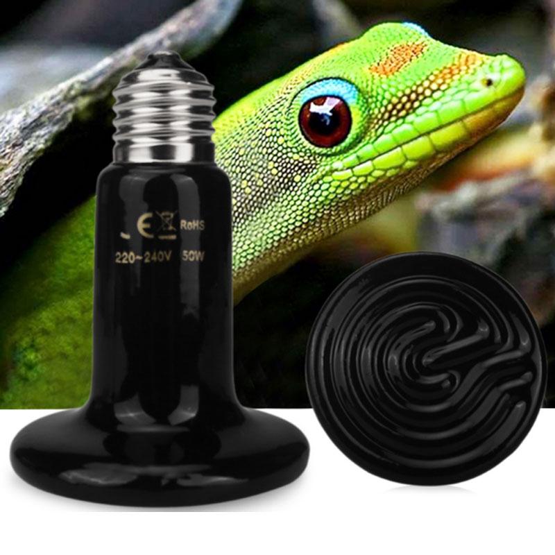Стеклянный контейнер для рептилий керамическая нагревательная лампа разведения
