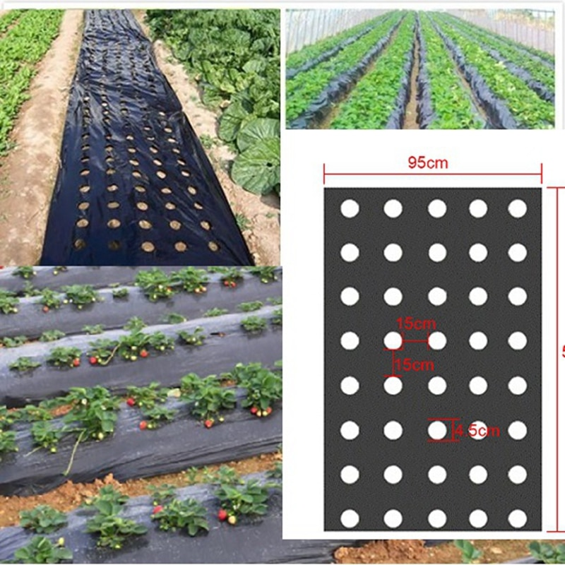 5 furos 95cm * 50m 0.02mm preto jardim vegetal membrana plantas agrícolas mulching semeadura plástico perfurado pe filme