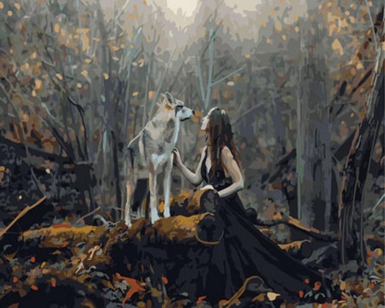 Desmontura diy pintura al óleo pinturas al óleo por números figura pintura por número para decoración del hogar 4050 cm señora con lobo