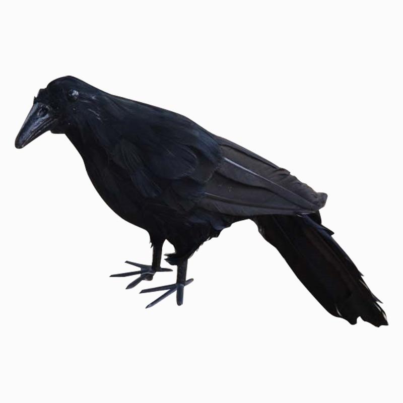Accessoire réaliste de déguisement de Halloween   Nouveau corsage noir ravin, cornet à plumes, accessoire pour robe de déguisement