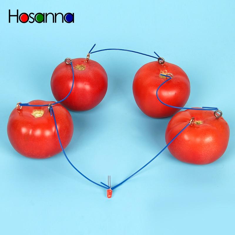 Hosanna niños fruta patata tomate batería eléctrica prueba ciencia Juguetes Kit de aprendizaje Física Juguetes educativos para niños