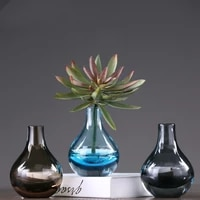 colored transparent glass vase decoration modern minimalist creative home decoration furnishings table flower