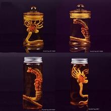 Prédateur Alien larve visage Bug + bouteille en verre feu fille jouets marrons Facehugger Culture réservoir