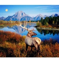 full drill diamond painting diamond embroidery hobbies and crafts riverside of deer pictures of crystals diamond mosaic a172r
