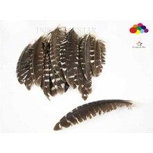 Plume de faisan premium 100 pièces   Plume de 10-15cm/4-6 pouces, queue noire magnifique, bricolage, masque coiffe pour costume de carnaval, 100% pièces
