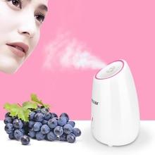 Nano fruits Facial vapeur brume chaude pulvérisateur à vapeur SPA hydratant visage humidificateur nettoyage en profondeur soins de la peau Instrument de beauté