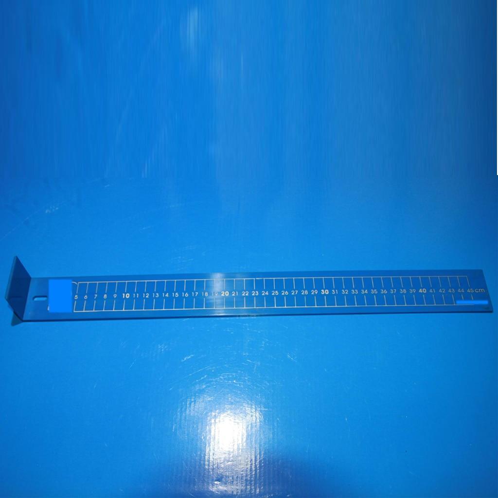 Regla de pesca de plástico impermeable, regla para peces de 19 pulgadas azul