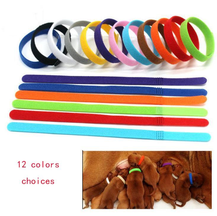 12 unids/set ajustable Nylon pequeño perro mascota collares para perrito recién nacido mascotas collar de identificación gatito Whelping cachorro collares