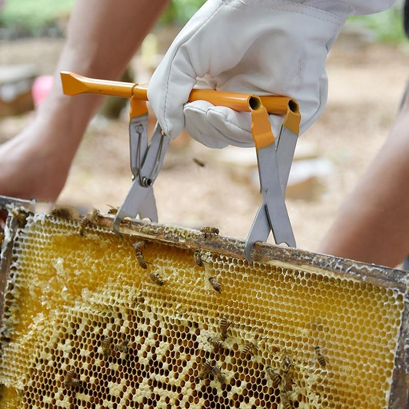 Soporte de marco de colmena de agarre de acero inoxidable para colmena, Clip de septo, elevador, pinzas para apicultura, suministros para apicultores