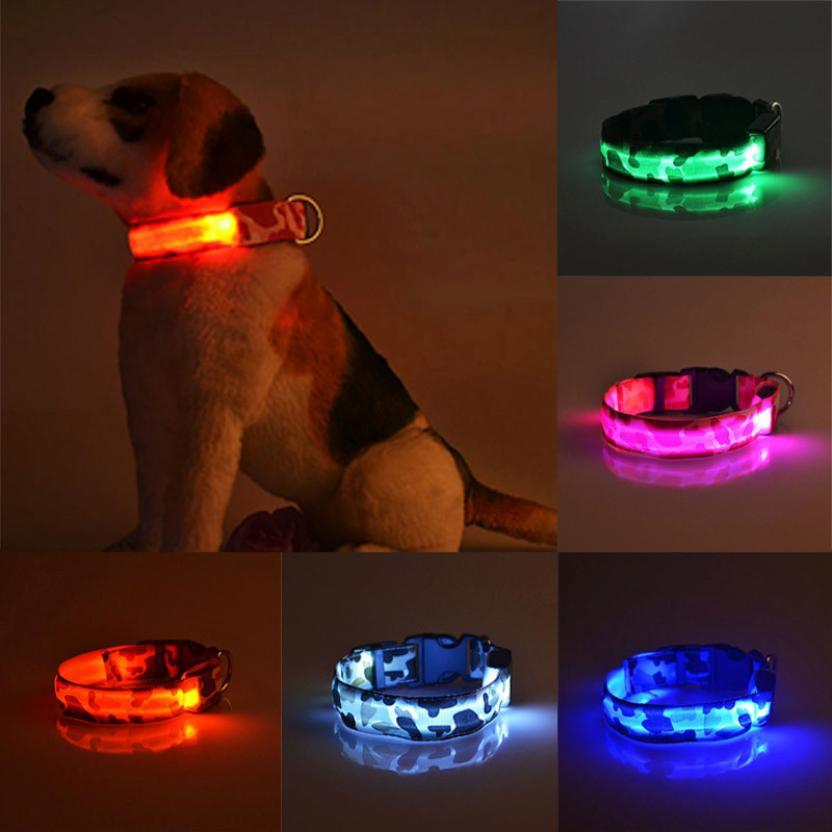 Collares fluorescentes luminosos de nailon Collar de perro seguridad nocturna LED resplandeciente arnés de perro collares de gato resplandor suministros para mascotas # R5