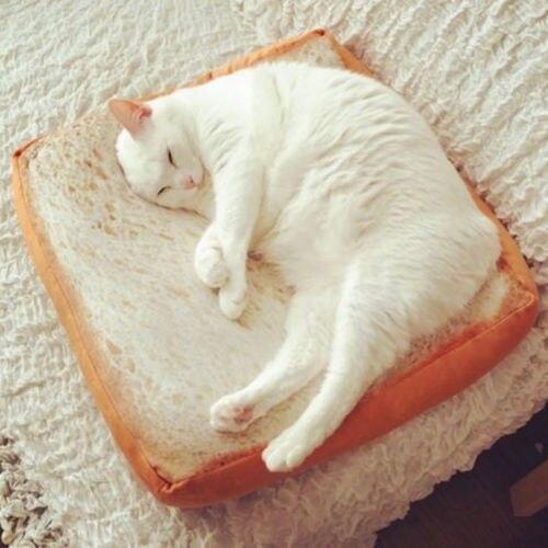Мягкая подушка для домашних животных, коврик для тостов, в форме хлеба, моющийся матрас для кошек, собак, сна, игр, отдыха, постельный коврик, Рождественский подарок