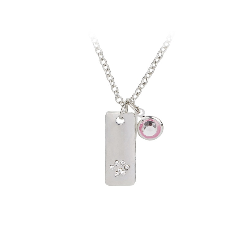Simple Lady's Dog's Claw Single Drill Necklace with Rhinestones Decorated Dog Tag Necklace