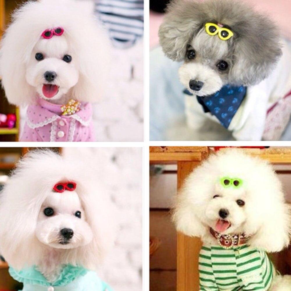 Lote de 10 unidades de gafas de sol de plástico para mascotas, tocado con horquillas, pinza de pelo para perro y mascotas, cabeza de flor para cachorros pequeños, perros, peluche y gatos de 4x2cm