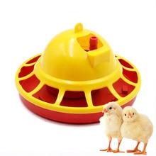 Fontaine mangeoire automatique pour poulets   Fontaine mangeoire à poulet, ensemble pour buveurs, tasse dalimentation pour volaille