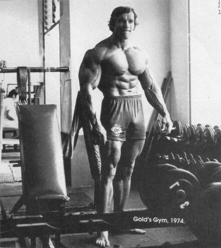 Living room home wall decoration fabric poster Arnold Schwarzenegger Bodybuilding Bodybuilder barbell dumbbells gyms athletic