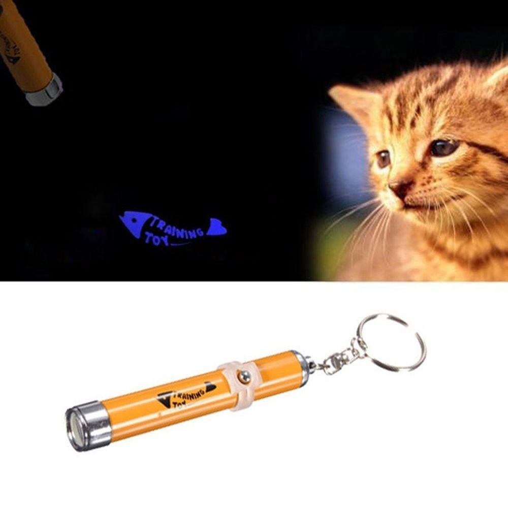 Gran oferta láser de Gato Spot Classic 5 en 1 para gatos, holograma, imágenes, juego portátil, puntero, bolígrafo, rayo de luz, juguete de gato