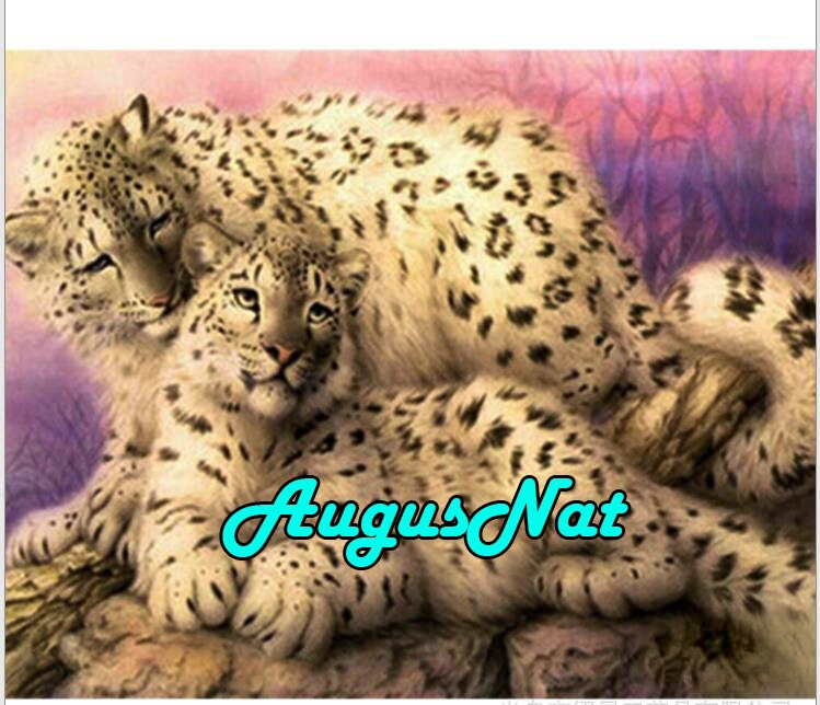 Daimond leopardos animais pintura diamante bordado cheio rodada amantes daimont mosaico enigma pintura imagem pintura por números