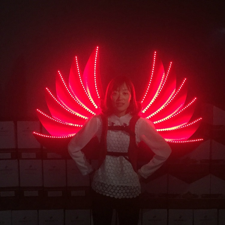 Hot Sale Red Led Luminous Catwalk Show Wings Led Lighting Ballroom Costume Dancing Stage Wear