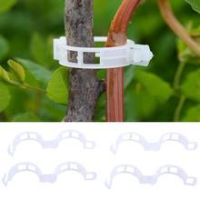 50/100Pcs Plastic Plant Support Clips For Types Plants Hanging Vine Garden Vegetables Greenhouse Garden Ornament