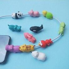 Animal câble morsure protecteur pour Iphone Protege câble copains dessin animé câble morsure Kabel Diertje téléphone USB câble chargeur protecteur