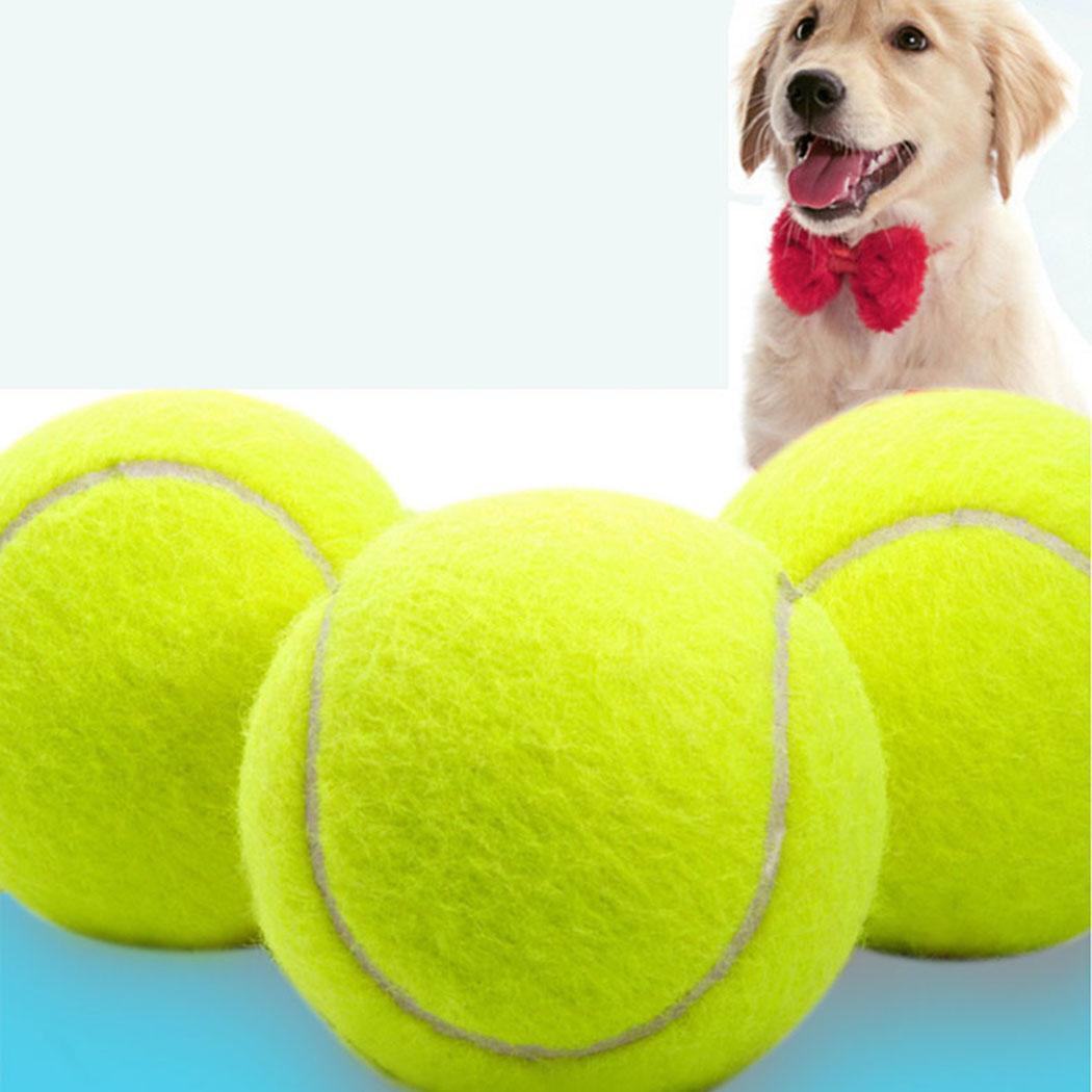 9 5 дюймов стрейч для домашних животных Спортивные товары теннис 24 см Открытый
