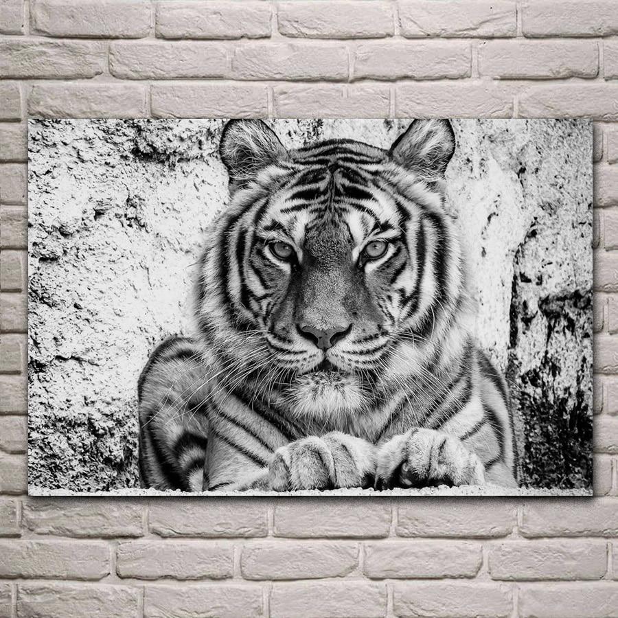 bw handsome tiger wild cat portrait monochrome living room decoration home art decor wood frame fabric poster KH717