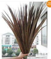 free shipping 100 pcs long natural color pheasant tail feathers 22 24inches55 60cm