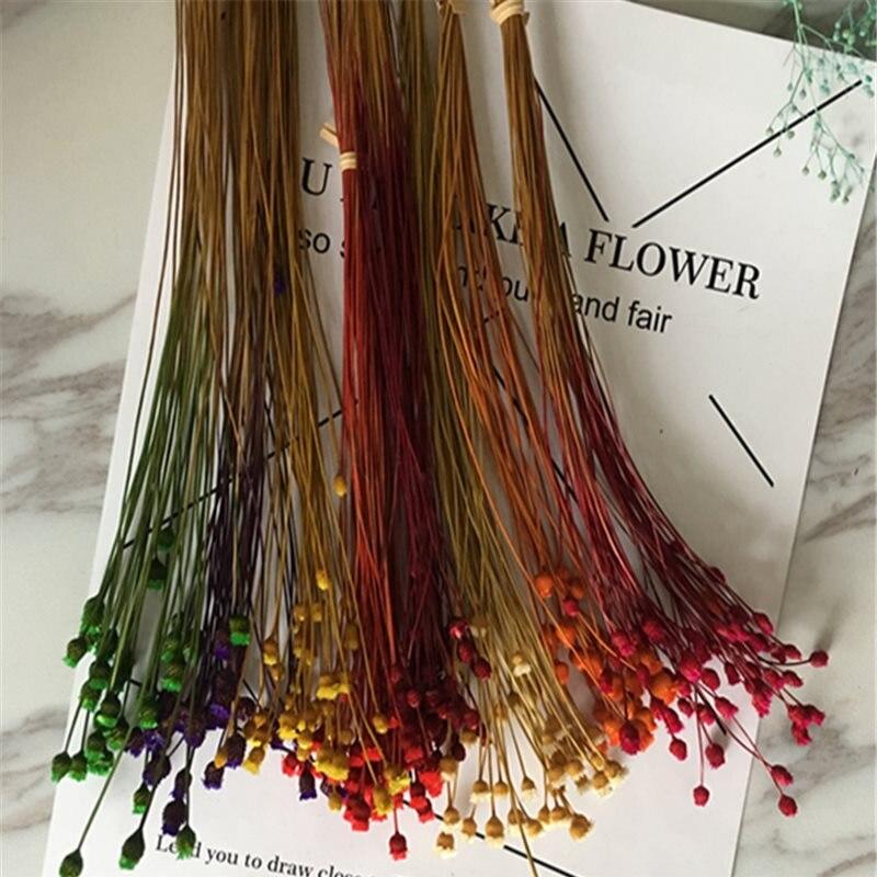 2 raíces/lotes de 7 ramos de flores de colores, flores felices, flores secas, flor eterna, decoración del hogar, material fotográfico