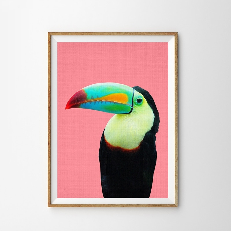 Toucan Vogel Leinwand Drucke Moderne Fotografie Helle Bunte Große Poster Kunst Malerei Tropische Papagei Bild Kinder Zimmer Dekor