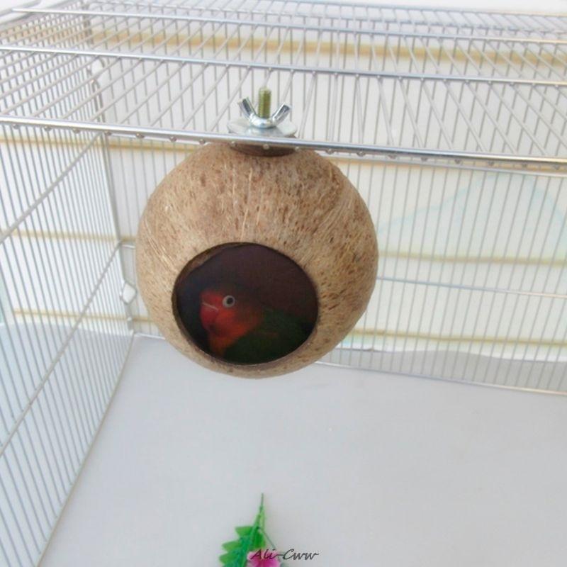Гнездо для попугая натуральный кокосовый скорлуп кормушка, кормушка, попугай, для птиц белок хомяк, игрушки, порода домашних животных, декор...