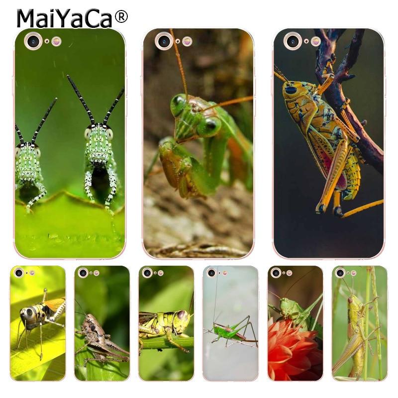 MaiYaCa insecto grillo transparente cubierta de teléfono de TPU suave para iPhone 6X6 s 7 7plus 8 8Plus 11pro max5S 11pro caso coque