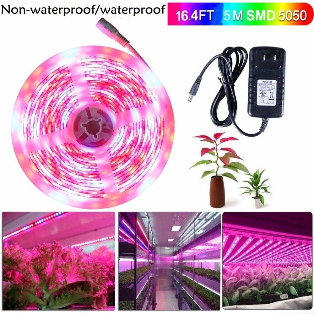 5m luces LED De cultivo DC12V banda LED para cultivo De plantas cinta De crecimiento Fita De juego De luces LED con adaptador