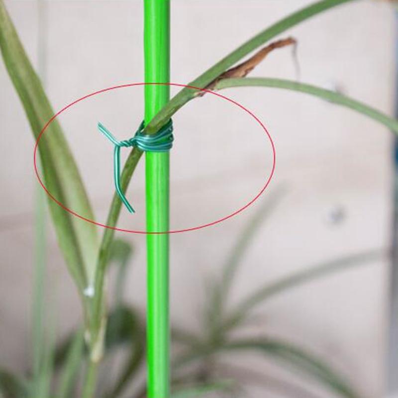 100pcs зелено градинарство лоза - Градински принадлежности - Снимка 4