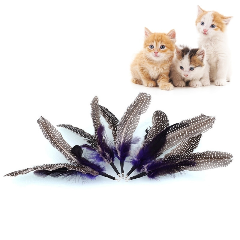 5 piezas de repuesto para mascotas para varita de pluma de pájaro gato juguetes interactivos recarga hogar gota envío gato juguetes regalo