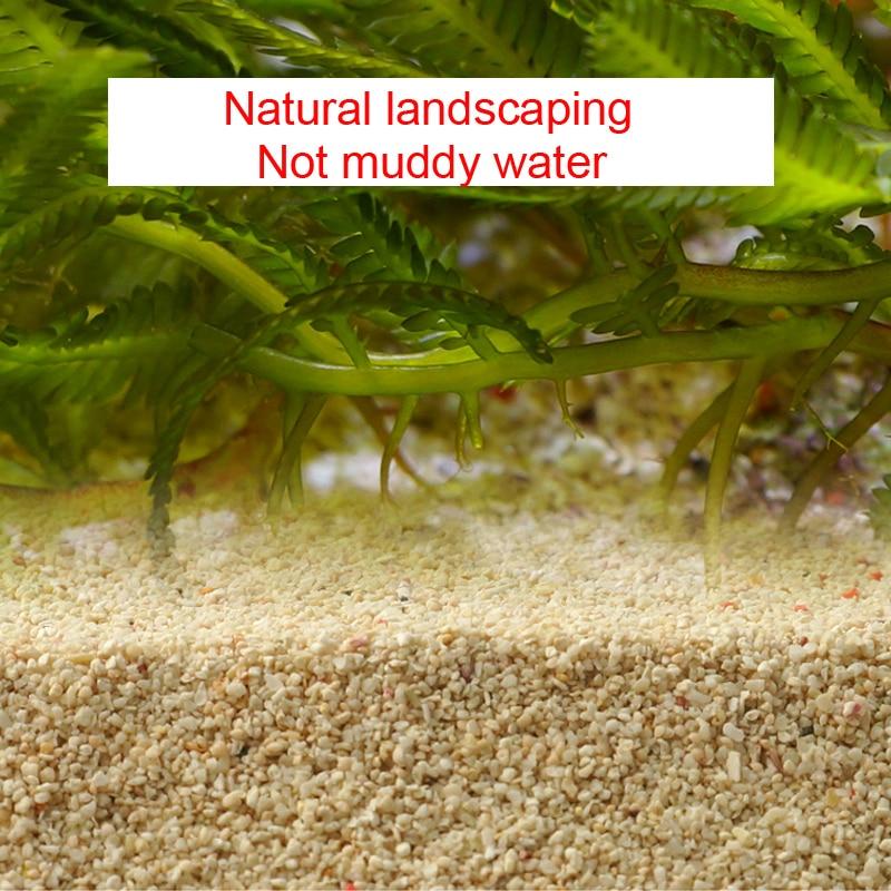 Free Shipping(500g/lot)Home Decoration Natural White Coral Sand  Micro Landscape Platform Bedding Decorative sand