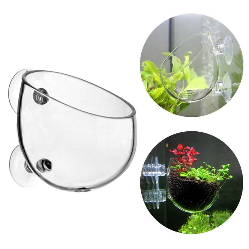 Mini pecera de cristal planta bonsái taza planta de agua para acuario maceta con césped Copa cilíndrica para decoración de plantas acuáticas
