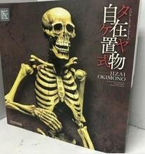 Human Body Bones TAKEYA JIZAI OKIMONO The bones Action Figure toy Model T30