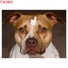 Diy Diamant Schilderen Kruissteek Kits Pit Bull Terrier Hond Foto S Van Strass Borduurwerk Volledige Vierkante Mozaïek Decoratie Thuis