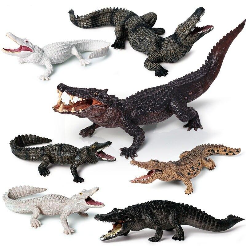 Modelo de cocodrilo anfibio para niños, simulación sólida, jabalí salvaje, cocodrilo Nilo, Cocodrilo, caimán, juguetes de vida silvestre